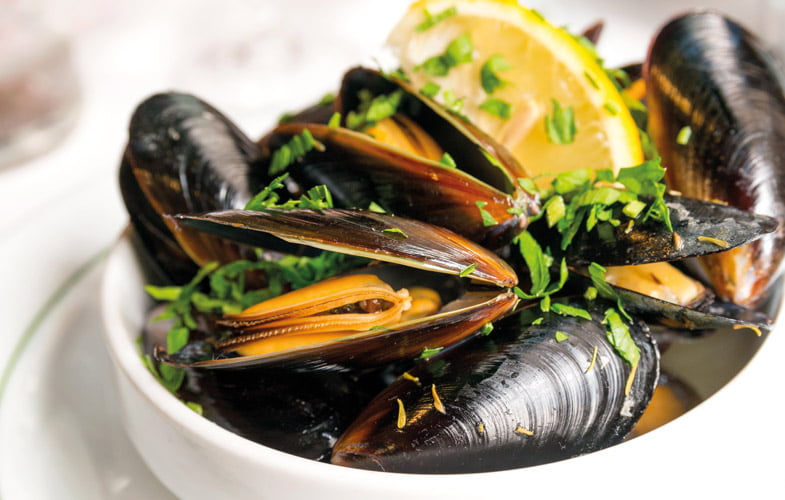 how to tell if mussels are alive