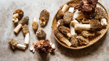 What do I do with… Morel mushrooms