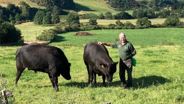 Wagyu to your door with Hoardweel Farm