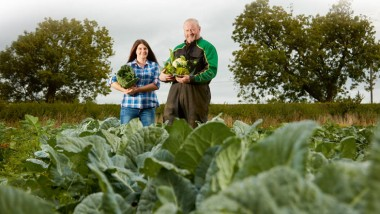 Veggie heaven at Blagdon Farm Shop