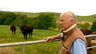 Fame at last at Hoardweel Farm